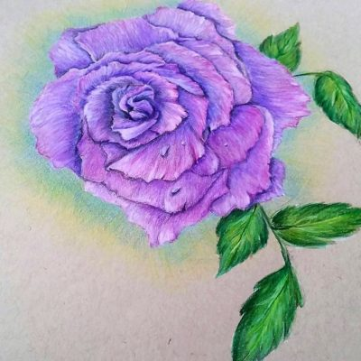 Jill-Velasco-Colored-Pencil-Flower-Workshop